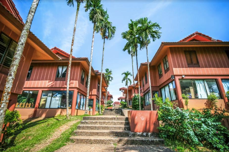 Real Life Phuket, August 2017
