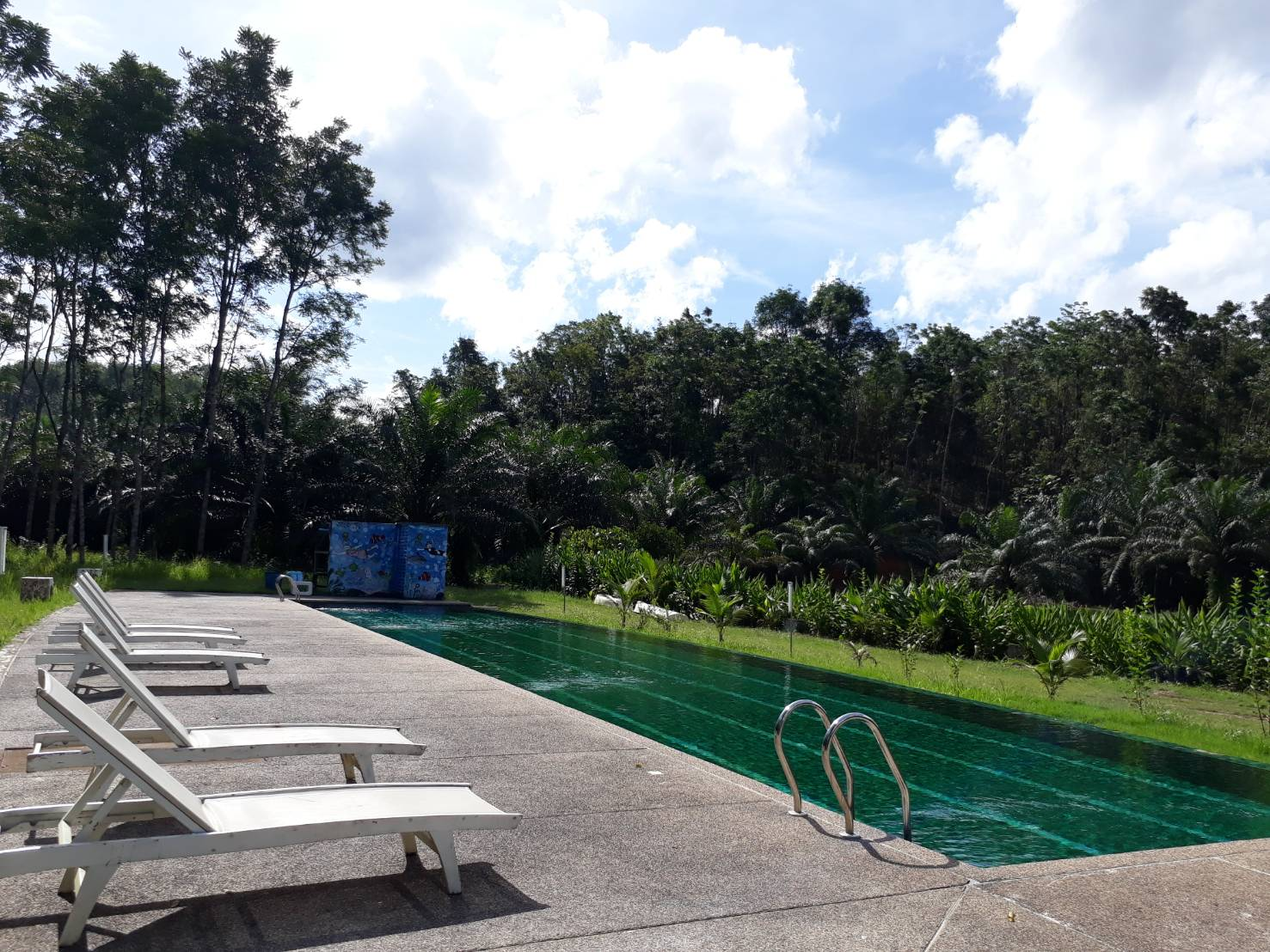 Outdoor swimming pool is open for use every day.